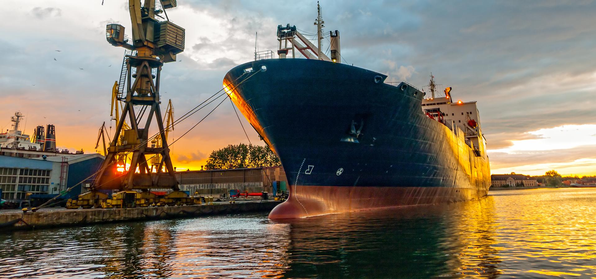 Bulk Cargo Service Carribbean
