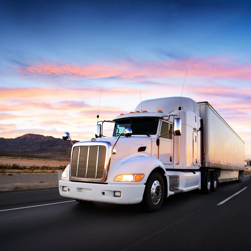 Freight Forwarding and Cargo Transportation